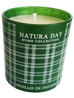 Fig leaves scented candle