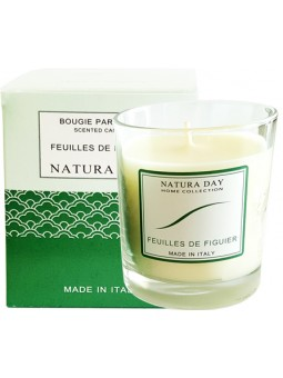 Fig leaves candle sublime